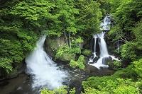 栃木県 日光市 竜頭の滝と新緑