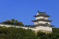兵庫県 明石城の巽櫓