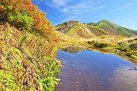 長野県 秋の種池と爺ケ岳遠望