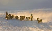 中国 内モンゴル自治区 乗馬