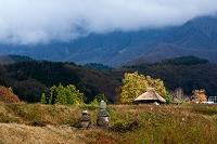 鳥取県 江府町 里の秋