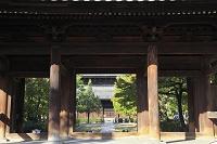 京都府 建仁寺 三門越しに見る法堂