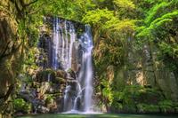 和歌山県 新緑の木漏れ日の桑ノ木の滝