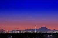 東京都 千葉県 富士山とスカイツリーの夜景