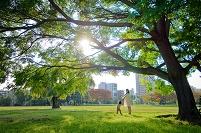 大樹と日本人親子