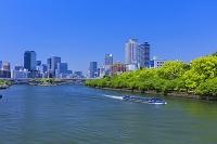 大阪府 新緑の大川とアクアライナーとビル街