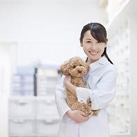 トイプードル 犬を抱く医者