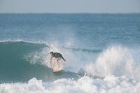 サーフィンしている日本人男性