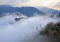 奈良県 吉野町 玉置山 雲海 秋