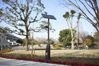 太陽電池パネルを備えたLED照明 - 定点撮影(昼間の様子=充...