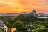兵庫県 朝焼けの姫路城