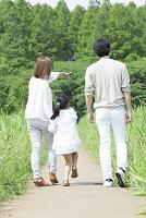 手を繋いで歩く日本人家族の後ろ姿