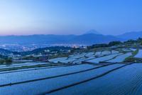 山梨県 富士山と棚田