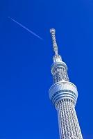 東京都 東京スカイツリーと飛行機雲