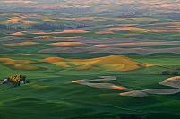 アメリカ合衆国 ワシントン州 コルファックスのパルース丘陵