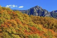 山梨県 信州峠より紅葉と瑞牆山