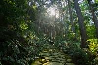 三重県 馬越峠 熊野古道 起伊山地の霊場と参詣道