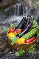 渓流で冷やす夏野菜