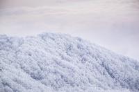 セルビア 雪山
