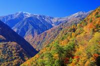山梨県 南アルプス林道より紅葉の白鳳渓谷と南アルプス 間ノ岳...