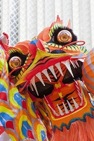 中国 香港 フェスティバル