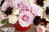 バラとチョコレートコスモスのアレンジメント