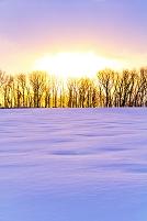北海道 雪野原の初日の出
