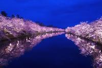 青森県 弘前公園夜景