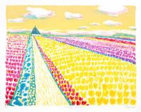 オランダのチューリップ畑(リトグラフ)