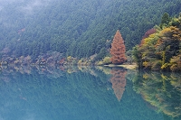 徳島県 那賀川