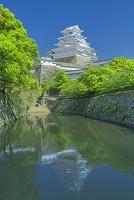 兵庫県 姫路城と堀