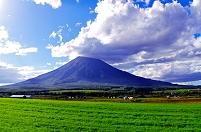北海道 雲たなびく午後の羊蹄山と緑の燕麦畑