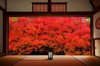 兵庫県 安国禅寺