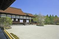 京都府 仁和寺の南庭