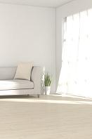 ソファと観葉植物が置かれた部屋 CG