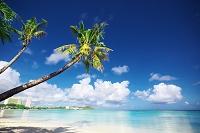 グアム タモンビーチと青空