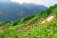岐阜県 弓折岳から朝の穂高岳