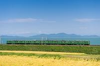 滋賀県 普通電車と水田