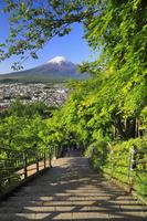 山梨県 新倉山浅間公園 忠霊塔に続く398段の階段と残雪の富士山