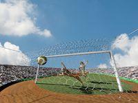 寅のサッカー