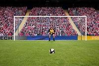 サッカーボールとゴールキーパー