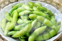 京都府 枝豆