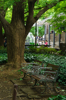 落ち着いた雰囲気のベンチ