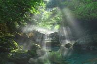 岐阜県 円原川の朝霧と光