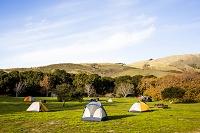芝生の上のキャンプ