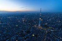 東京都 東京スカイツリー夜景(粋)
