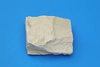 泥岩 堆積岩類 千葉県富津市