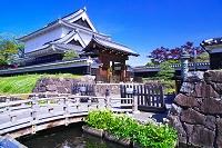 京都府 勝竜寺公園