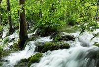 クロアチア プリトヴィツェ湖群国立公園の滝