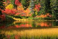 北海道 高原温泉